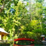 静岡 自然が美しい寺社巡り~週末にほっと一息リフレッシュ旅~ | トラベルダイアリー
