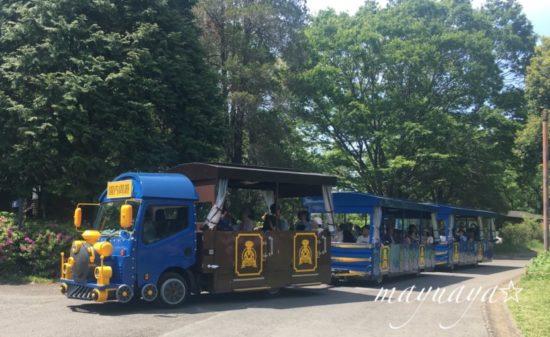 3歳児でも思いっきり楽しめる!子連れ昭島の旅| トラベルダイアリー