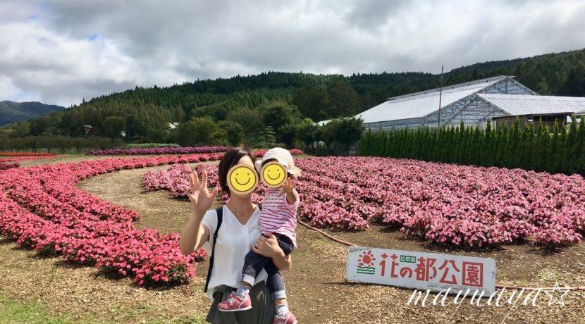 3歳児でも思いっきり楽しめる!子連れ山中湖の旅| トラベルダイアリー