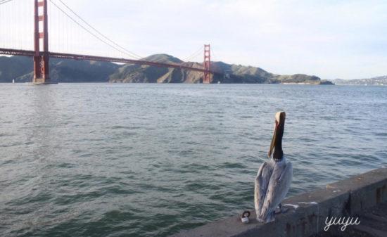 友人に会いにサンフランシスコへ・・・観光客より観光しました①| トラベルダイアリー
