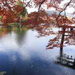 雄大な自然風景と街並みに癒される♪秋の湯布院日帰り観光| トラベルダイアリー