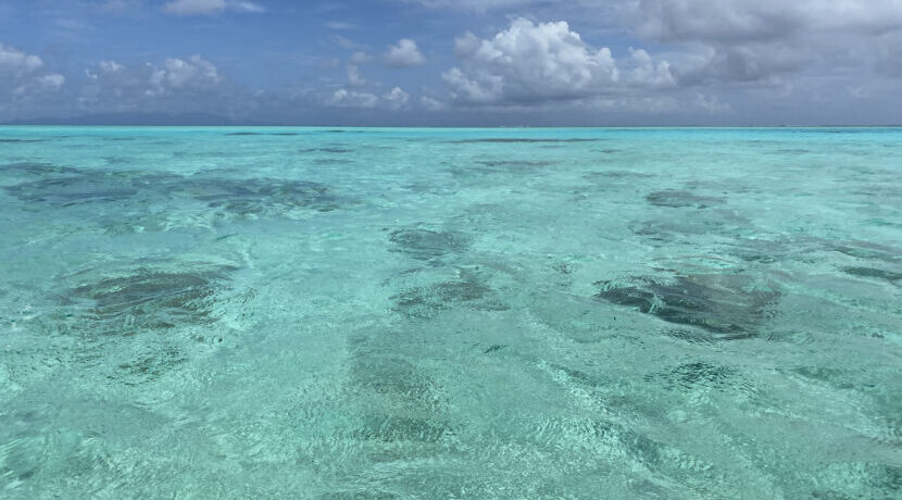 地上の楽園!タヒチボラボラ島で過ごした夢の様な日々| トラベルダイアリー