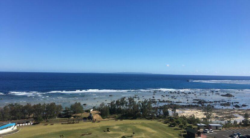 大自然 奄美大島で海ガメと泳ぐ| トラベルダイアリー