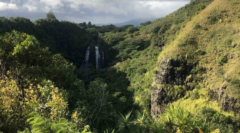 ガーデンアイランド カウアイ島のワイルドな自然に触れる| トラベルダイアリー