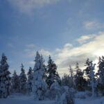 ラップランドのリゾート地サーリセルカで雪遊びを楽しみつくす!| トラベルダイアリー