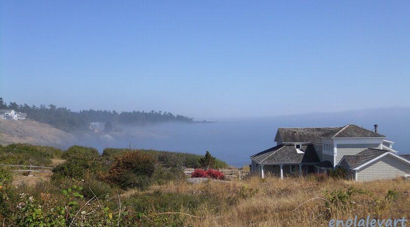 女子二人旅 in アメリカ のどかすぎる島、サンフアンアイランド| トラベルダイアリー