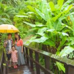 4歳児でも思いっきり楽しめる!子連れ沖縄の旅| トラベルダイアリー