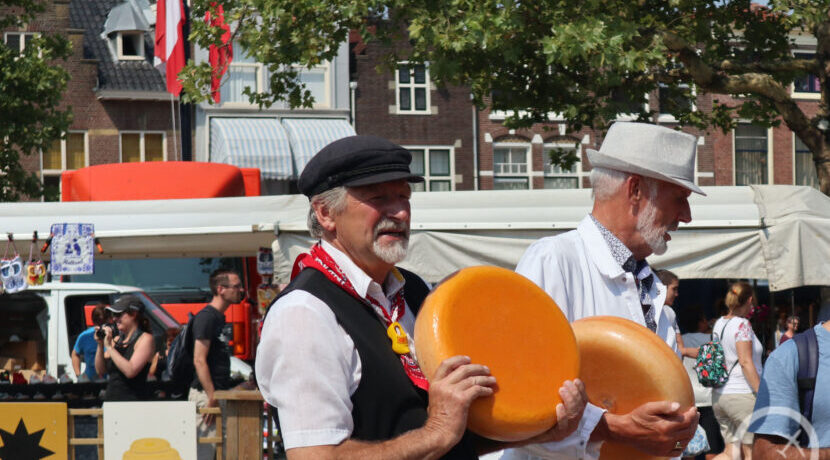 巨大チーズが飛び交う!オランダ・ゴーダで開かれるカースマルクト_トラベルダイアリ| トラベルダイアリー
