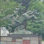 【一人旅】都内のオアシス三鷹で3連泊。緑とセミの鳴き声に囲まれる| トラベルダイアリー