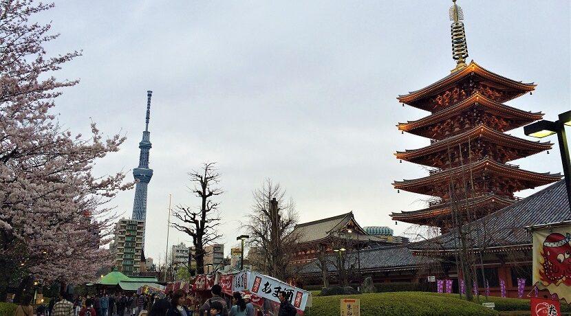 東京といえば!誰もが一度は訪れる定番の観光スポットを巡る旅| トラベルダイアリー