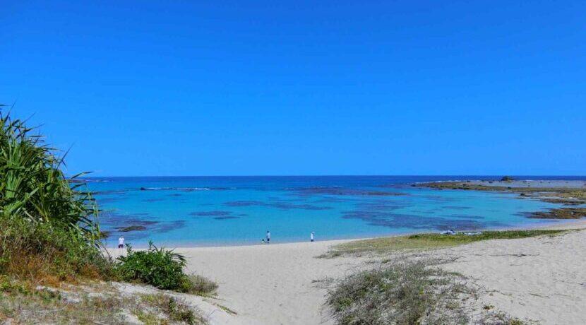 【東洋のガラパゴス】美しい海に囲まれた奄美で絶対外せないスポット| トラベルダイアリー