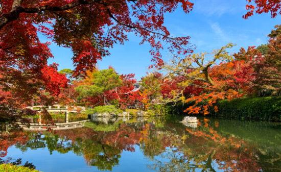 3000本のモミジにうっとり♪秋の京都は【永観堂】に行くべし!| トラベルダイアリー