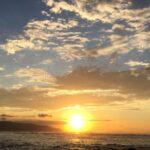 初めての子連れ海外♡ハワイを楽しみ尽くす!~ノースショア編~| トラベルダイアリー