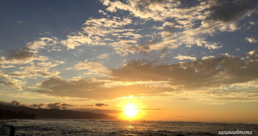 初めての子連れ海外♡ハワイを楽しみ尽くす!~ノースショア編~  トラベルダイアリー